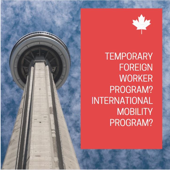 International Mobility Program